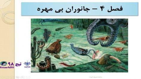 پاورپوینت درس جانوران بی مهره-چهارم دبستان